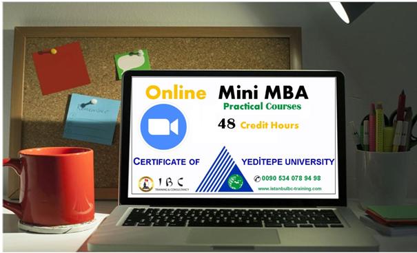 الماجستير المهني المصغر MINI MBA